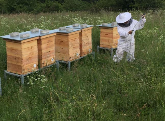 Včelařská farma s produkty v BIO kvalitě