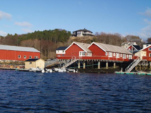Zdravý vzduch a krásná příroda v Norsku